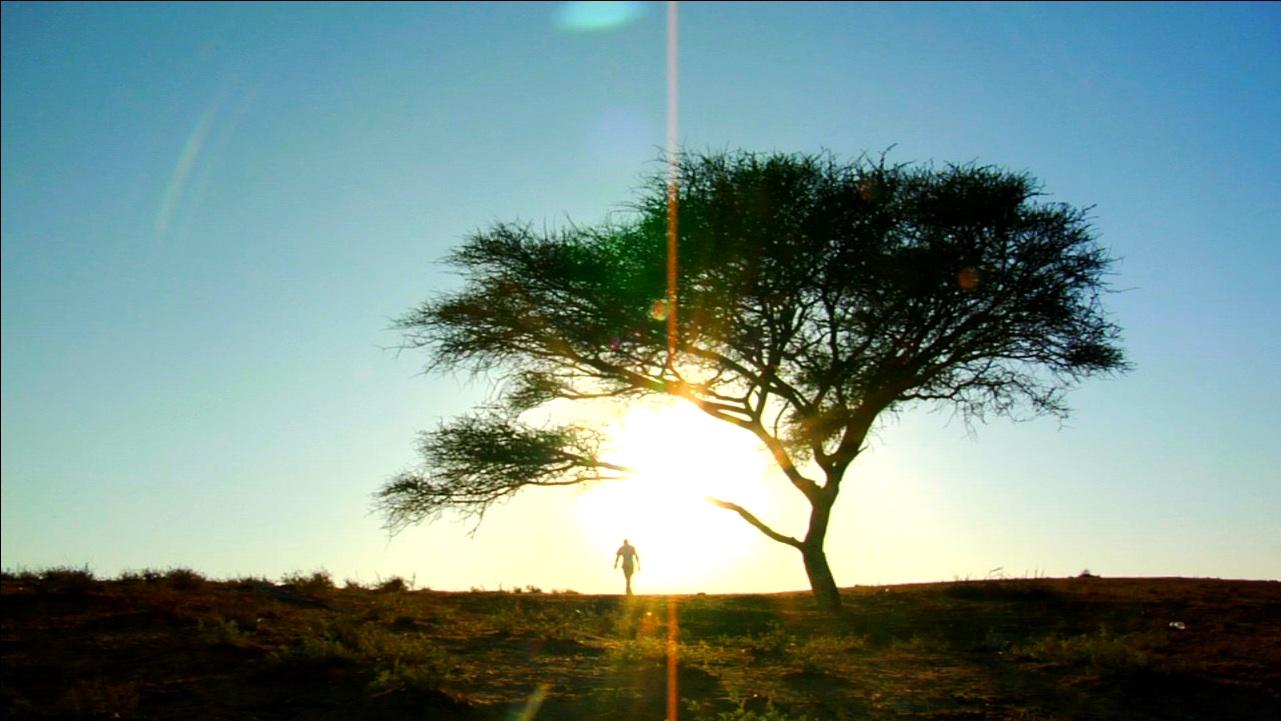 Film Fix TV: AFF 2010 – Michael Pertnoy on THE LAST SURVIVOR